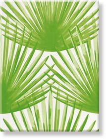 steuler bongo bongo 34071 dekoracja cienna 34071. Black Bedroom Furniture Sets. Home Design Ideas